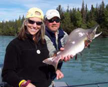 Pink Salmon with Advantage Angling
